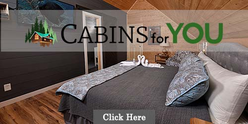 Cabins For You